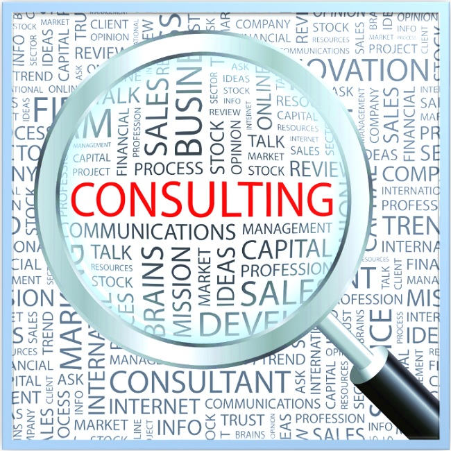 <h5>Consulting</h5>
