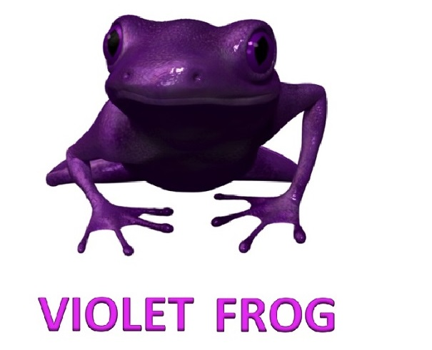 Violet Frog Mold Remediation Atlanta 605